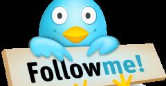 Follow Priscilla On Twitter